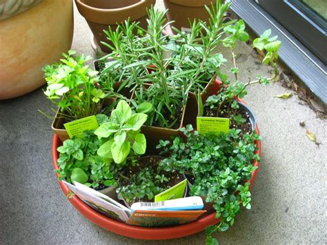 herb pots 8 ways to recycle glass bottles