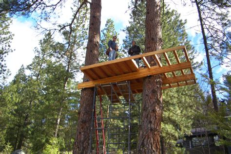 tree house builders the treehouse borealis builders structural design custom construction in