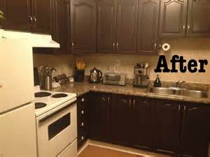 Kitchen Cabinet Paint Kit Diy Cabinet Makeover Using Giani Nuvo Cabinet Paint Kit