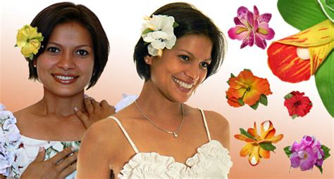 hair of the meaning the meaning of a flower in a s hair ktc hawaiian kapo trading company