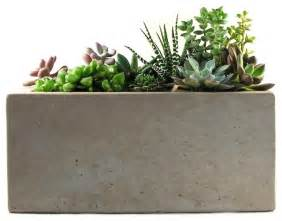 Indoor Planter Rectangular Concrete Planter Modern Indoor Pots And