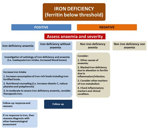 iron deficiency anemia american family physician 100 nutrition assessment in pregnancy dietary