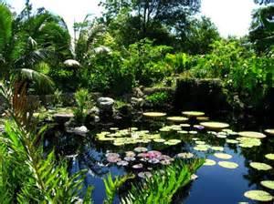 Fairchild Botanical Gardens The Most Beautiful Gardens In The World Part Ii World Flowers