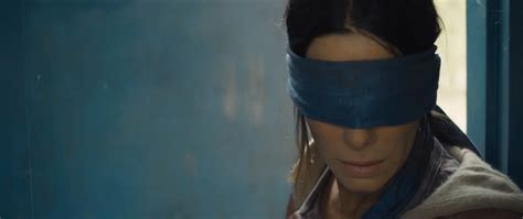 Bird Box by Review Your While Bird Box