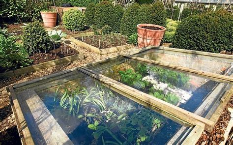 underground spring in backyard pin by bethany mccool on yard and garden pinterest