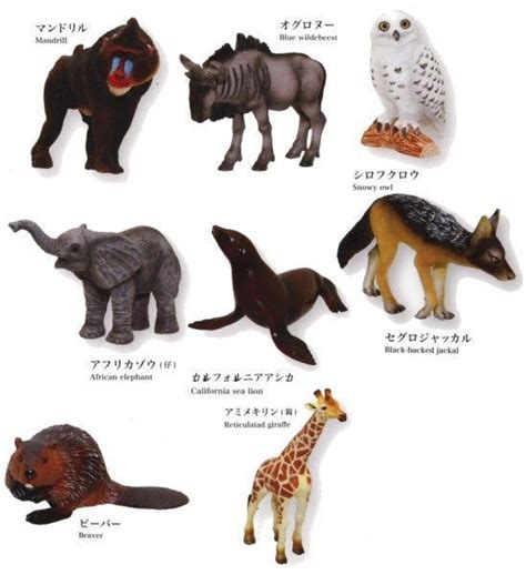 Safari Ltd Ic Bearded 1000 images about animal figurines papo collecta