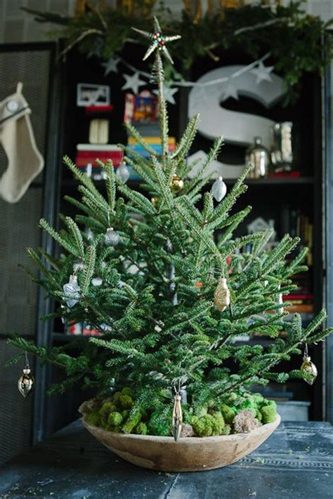 20 simple christmas tree display for small spaces home