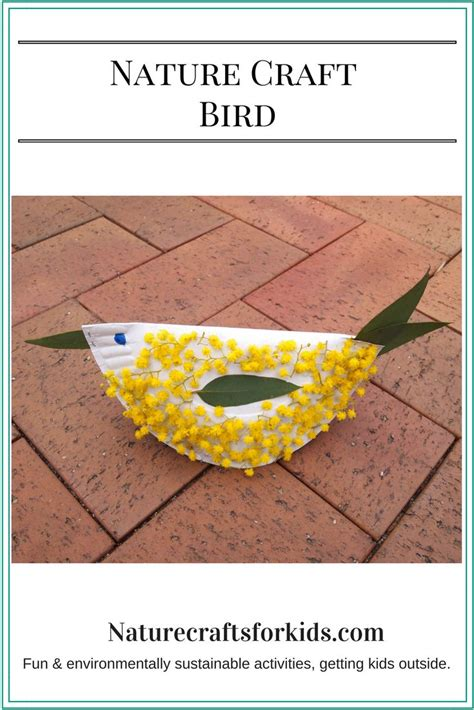 Craft Paper Australia - 58 best images about australian nature crafts on