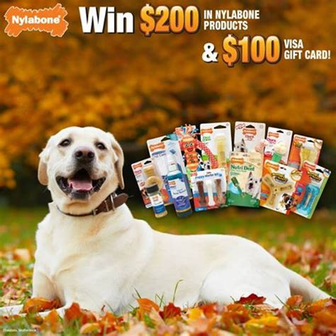 Weigh To Win Sweepstakes - enter to win club nylabone fall sweepstakes thrifty momma ramblings