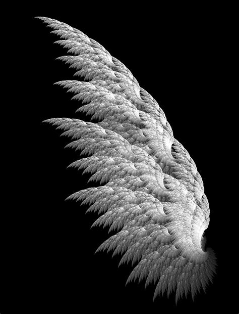 angel wings angels images angel wings hd wallpaper and background photos 35926634