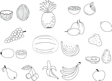 Picture Of Fruit Basket Printables
