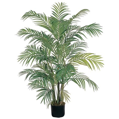 areca palm 4 foot areca palm tree potted 5001 nearly natural
