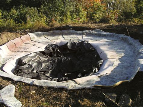 backyard pond liners diy natural backyard pond diy mother earth news