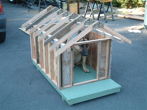 how to roof a dog house dog house plans trying it out for size dog house and dog stuff pinterest dog