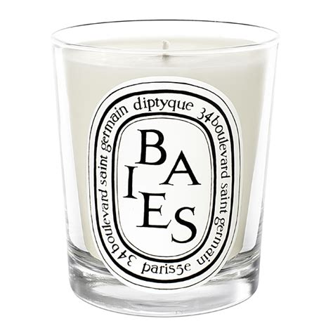 diptyque candele diptyque baies candle berries bulgarian roses