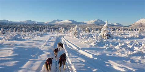 sledding canada sledding tours yukon sledding into the adventures