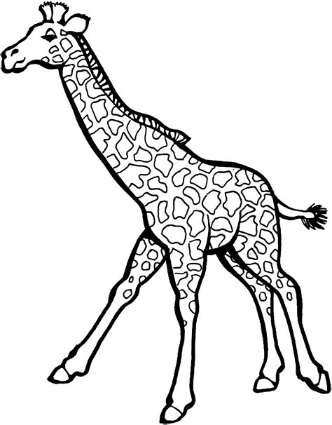 giraffe pictures coloring page giraffe coloring pages coloringsuite com