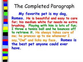 My Favorite Pet Essay by How To Take Care Of Pets Essay