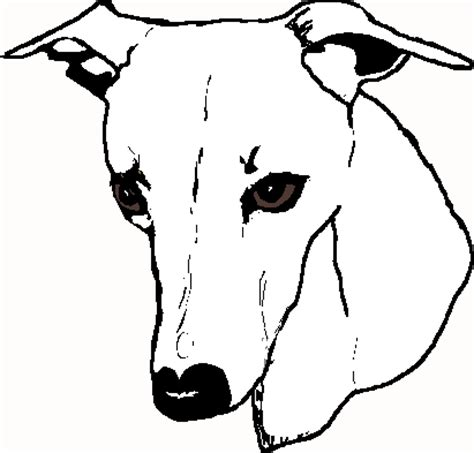 Home Design Builder whippet clipart page 3