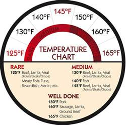 top 25 best meat temperature chart ideas on pinterest