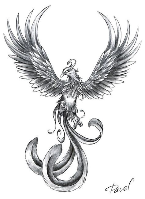 pheonix tattoo design 25 best ideas about tattoos on