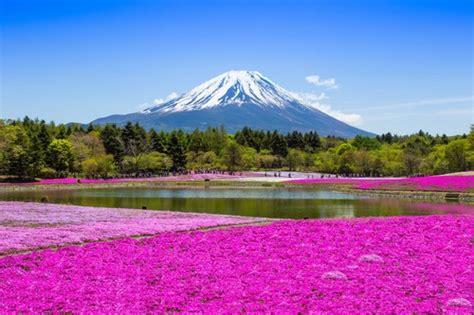 1325201898 le japon le japon visiter le japon 2 semaines
