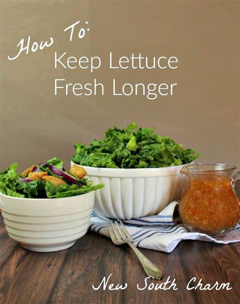 new year lettuce how to keep lettuce fresh longer the o jays lighter