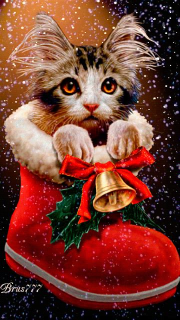 christmas animals animated santa let me find this one in my hohoho merry gifs