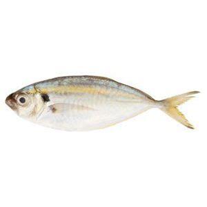 Ikan Selar mypasar halal fresh mart ikan selar kuning 250gm
