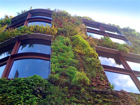 living roofs and walls living roofs green roofs living wall specialists