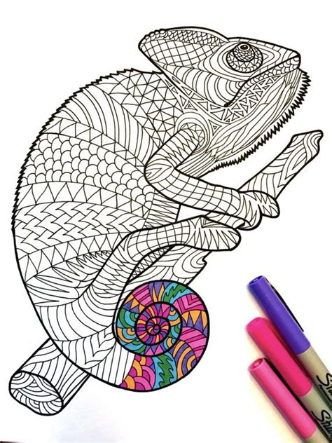 chameleon coloring page pdf chameleon pdf zentangle coloring page color pages