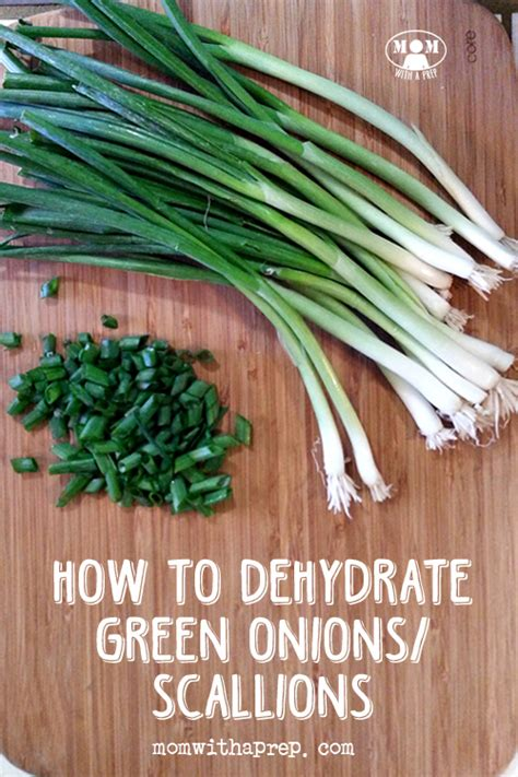 how to dehydrate green onions scallions mom with a prep
