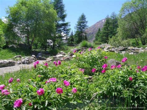 giardino botanico orari riapre il giardino botanico alpino paradisia www grand