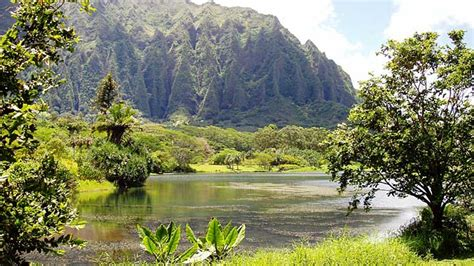 Botanical Gardens Kaneohe 5 Oahu Activities To Enjoy With Your Pearl Harbor Website