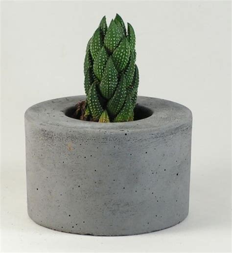 Indoor Modern Planters small but mighty concrete garden containers urban gardens