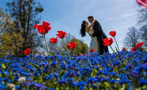Wedding Photography Courses by Wedding Photography Courses From The Trained Eye