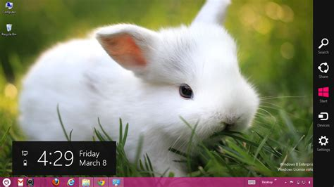 cute rabbit themes rabbit theme for windows 7 and 8 ouo themes