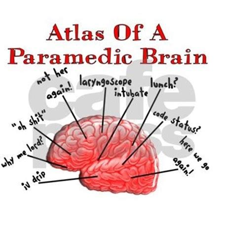 ode to the brain positiveneuro atlas of a paramedic brain picture frame by admin cp11157433