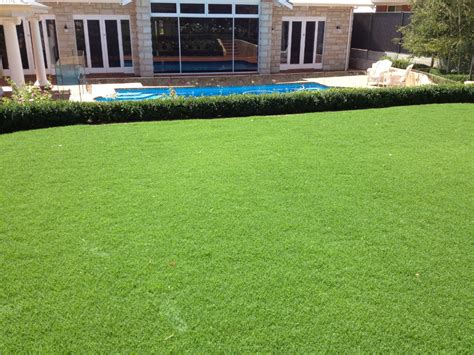 santa ana couch grass marne valley turf instant lawn supplies