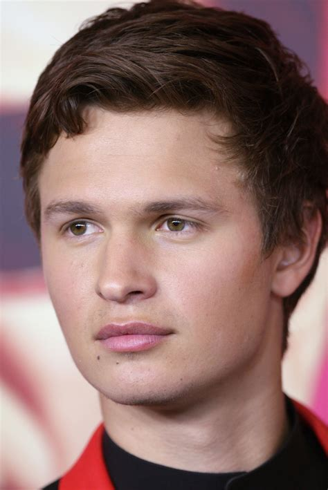 ansel elgort ansel elgort wikiwand