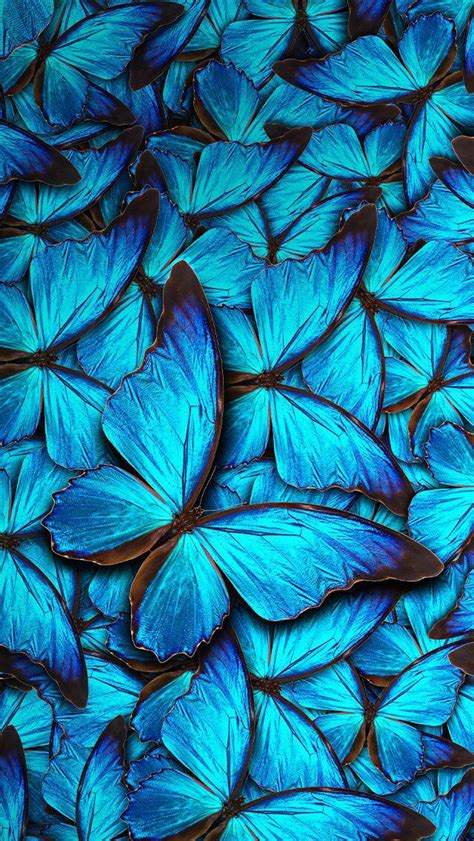 butterfly background the 25 best butterfly wallpaper iphone ideas on