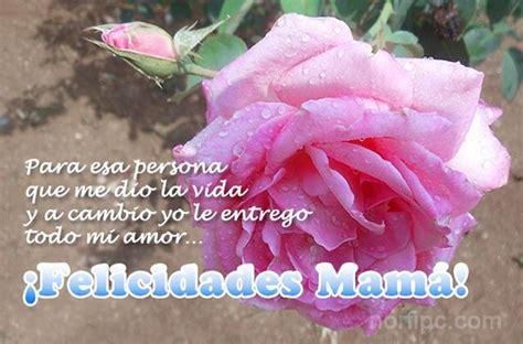 imagenes de amor de madre versos para mama related keywords versos para mama long