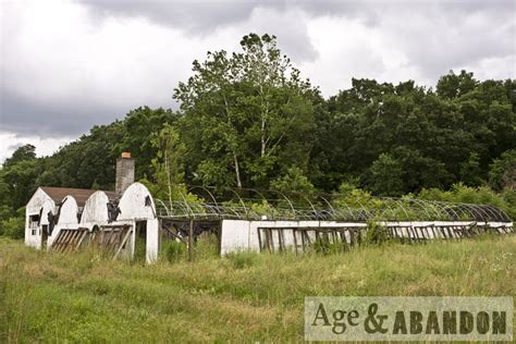 hudson valley gardens florist poughkeepsie ny age abandon