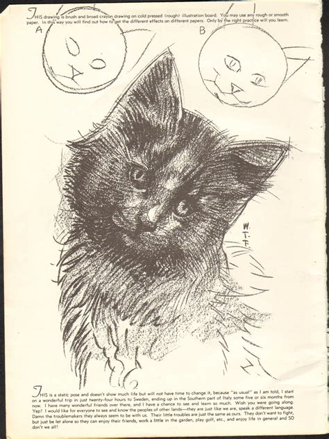doodle drawing lessons how to draw cats img 37 jpg