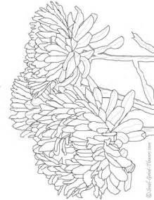 fall coloring pages for adults fall coloring pages coloring ville