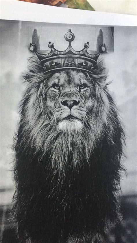 king david tattoo pin by lockhart on ink lions