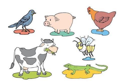 imagenes de animales oviparos viviparos y ovoviviparos webquest creator 2