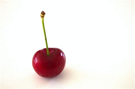 single in single cherry free stock photo domain pictures