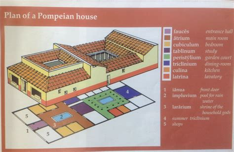 layout of house y7 lat plan of a pompeian house