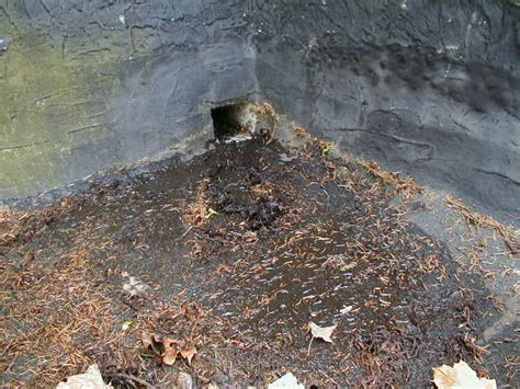 patio roof leaks